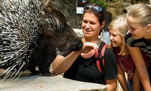 Naturschutz-Tierpark Görlitz e. V.: Eintritt für 2 Erwachsene, optional mit 2 Kindern, in den Naturschutz-Tierpark Görlitz e. V. (50% sparen*)