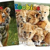 Up to 75% Off Zoobies Magazine Subscription