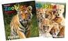 Up to 74% Off Zoobies Magazine Subscription