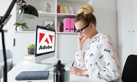 Corso online sulla suite Adobe con attestato