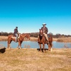 Up to 43% Off Horseback Trail Rides