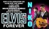 Spettacolo omaggio a Elvis Presley, Torino