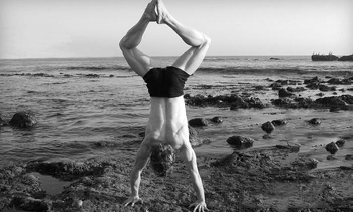 Triad Yoga & Pilates - South Main,San Joaquin Marsh: $29 for 10 Yoga or Pilates Classes at Triad Yoga & Pilates in Irvine (Up to $120 Value)