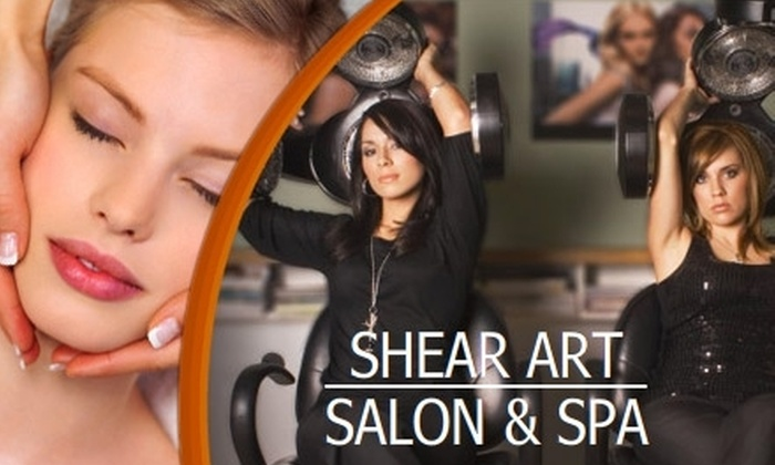 Shear Art Salon & Spa - Citrus Park-Fern Lake: $30 for $70 Toward Services at Shear Art Salon & Spa