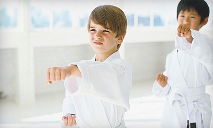 Tiger's Den Martial Arts & Fitness - Multiple Locations: Three- or Five-Day Kids' Summer Camp at Tiger's Den Martial Arts & Fitness (Up to 76% Off)