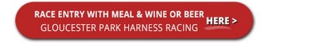 Buffet + Racing & Drinks Package for 1 ($99), 2 ($198), 4 ($396) or 10 People ($990) at Gloucester Park Harness Racing