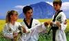 Up to 76% Off Classes at Golden Dragon Taekwondo