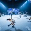 "Cirque du Soleil ""Crystal"""
