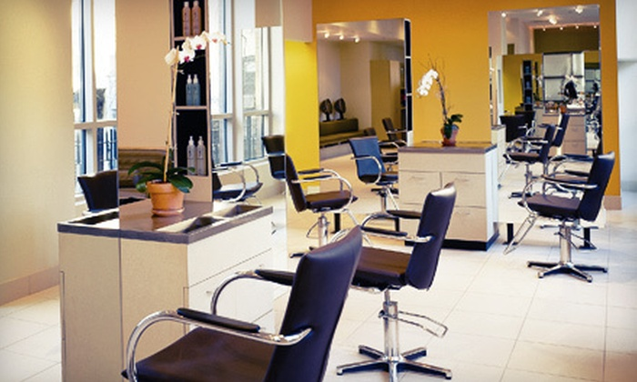 Paul Labrecque Salon & Spa - Multiple Locations: Haircut, Blowout, Style, and Deep-Conditioning Treatment at Paul Labrecque Salon & Spa (Up to 77% Off). Color and Highlight Options Available.