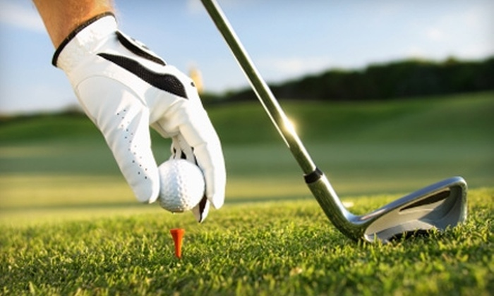 Ludus Tours - North Dallas: $2,475 for $4,950 Toward PGA Masters Tour Package from Ludus Tours