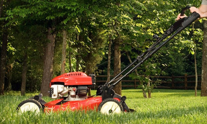 VIP - Hampton Roads: Six Lawn-Upkeep Services for a Small, Medium, or Large Lawn from VIP (Up to 51% Off)