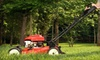 VIP: Six Lawn-Upkeep Services for a Small, Medium, or Large Lawn from VIP (Up to 51% Off)