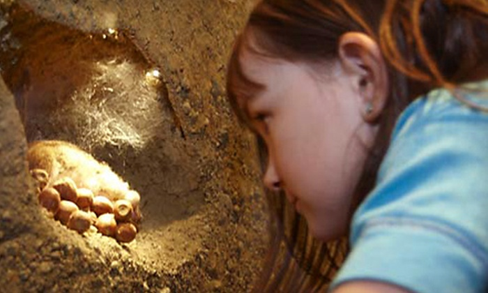 Maine State Museum - Augusta: One-Year Individual or Family Membership to Maine State Museum in Augusta (Up to 53% Off)