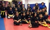 Mayo KickBoxing & MMA - New York City: 15 Martial Arts Classes at Mayo KickBoxing & MMA (57% Off)