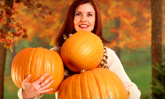 Tagge's Famous Fruit - Multiple Locations: $15 for $30 Worth of Pumpkins at Tagge's Famous Fruit