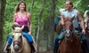Dead Broke Farms - Raleigh: One-Hour Private Horseback Trail Ride for Two or Up to Four at Dead Broke Farm (Up to 52% Off)