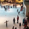 Up to 18% Off Ice Skating