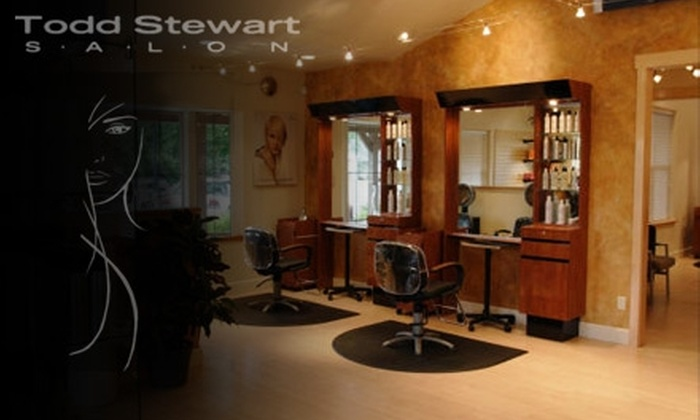 Todd Stewart Salon - Eagle: $25 for a Haircut and Style at Todd Stewart Salon in Eagle