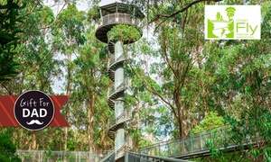Otway Fly Treetop Adventures: Otway Fly Treetop Walk 2-for-1 Offer - Two Children for $15 or Two Adults for $25, Weeaproniah (up to $50 Value)