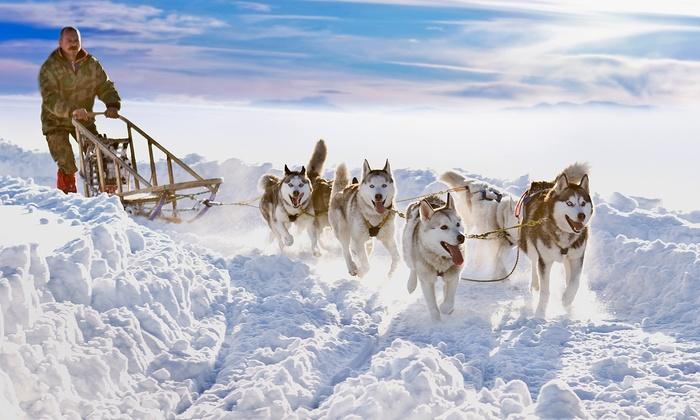 """כרמל תיירות: ❄ שלג, סקי וסנטה קלאוס: טיול מאורגן ללפלנד בן 6 לילות ע""""ב פנסיון מלא, כולל סיורים, מדריך, ציוד ארקטי, אופנועי שלג ועוד, החל מ-€1,578 לאדם!"""