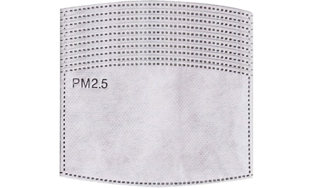 Up to Four Cotton Face Masks with up to 44 Filters