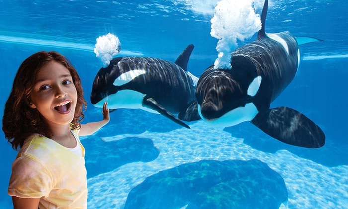 SeaWorld San Diego - SeaWorld San Diego: $79 for 2016 Fun Card with Unlimited Admission through 2016 at SeaWorld San Diego ($89 Value)