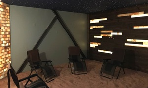 Up to 27% Off Salt Therapy Session at Kansas City Salt Mine at Kansas City Salt Mine, plus 6.0% Cash Back from Ebates.