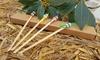 Cure-oreilles en bambou