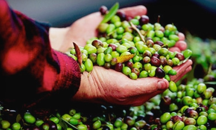 Pietra Santa Winery - Hollister: $30 for a Winery Tour, Olive-Oil-Press Tour, and Tasting Package for Two at Pietra Santa Winery in Hollister (Up to $95 Value)