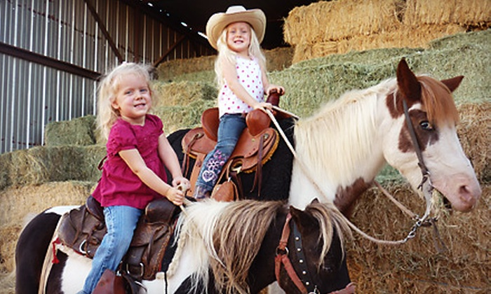DeWitt Stables - Lehi Community Improvement: Pumpkin-Patch Admission for Two or Admission for Two and Photo Opportunity at De Witt Stables in Mesa
