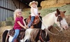 OOB DeWitt Stables - Lehi Community Improvement: Pumpkin-Patch Admission for Two or Admission for Two and Photo Opportunity at De Witt Stables in Mesa