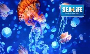 SEA LIFE Sunshine Coast: All Day Access to SEA LIFE Sunshine Coast from $20.80 (Up to $65 Value)