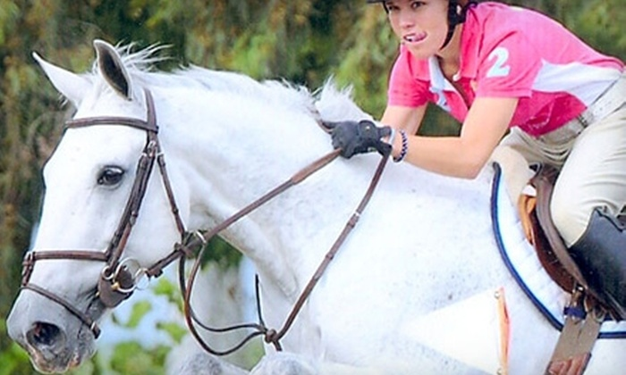 Foxtail Farms - Wilton: $99 for Four 60-Minute Private Horse-Riding Lessons at Foxtail Farms in Wilton ($220 Value)
