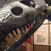 Up to 41% Off Admission at Canadian Fossil Discovery Centre