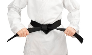 Kowkabany's Family Martial Arts: 10 or 16 Martial Arts Classes with Uniform and Custom Fitness Challenge at Kowkabany's Family Martial Arts (94% Off)