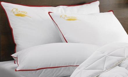 1, 2 ou 4 oreillers à plumes Sampur