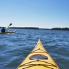 Up to 62% Off Guided Kayak Tour