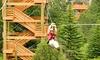 Up to 40% Off Ziplining Tour at Colorado Adventure Center