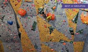 Centrum Wspinaczkowe Tarnogaj: Wejście na ściankę wraz z instruktorem dla 2 osób za 49,99 zł i więcej w Centrum Wspinaczkowym Tarnogaj (do -54%)