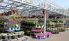 Orange Garden Center - City of Orange: $22 for $40 Worth of Plants and Gardening Supplies at Orange Garden Center