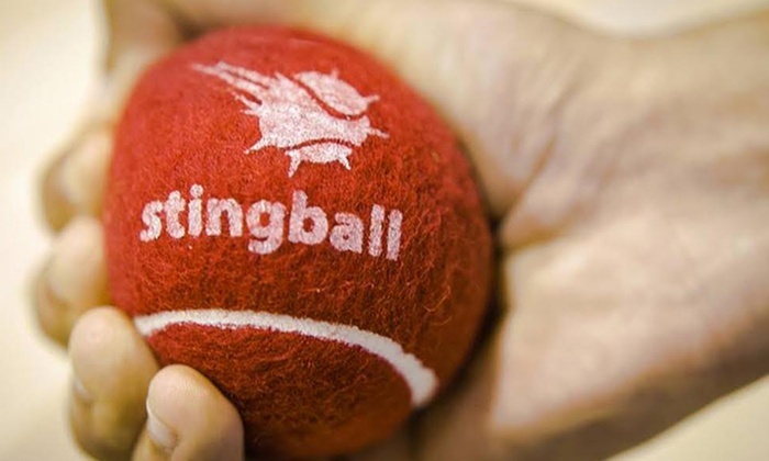 Stingball Ltd - Multiple Locations: Stingball: One or Two Sessions for Up to Five People