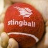 Stingball Session for Five