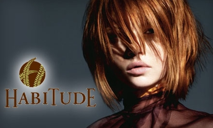 Habitude Day Spa and Salon - Multiple Locations: A Salon Experience at Habitude. Choose Between Two Options.