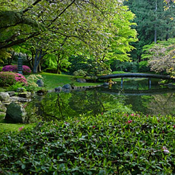 Nitobe Memorial Garden – Up to 58% Off Admission - Nitobe Memorial Garden | Groupon