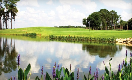 1-Day Unlimited Golf Package for One  - Crane's Bend at Orange Lake Resort in Kissimmee