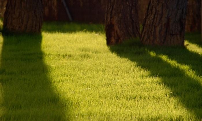 Bartlett Landscape Spray - Memphis: $35 for Two Lawn Treatments from Bartlett Landscape Spray ($80 Value)