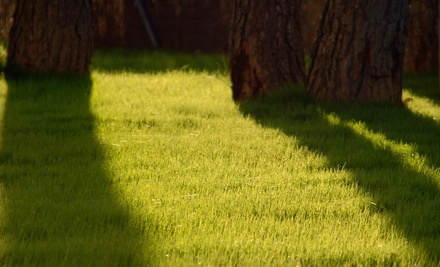 Bartlett Landscape Spray - Bartlett Landscape Spray in