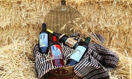 Visita a la bodega para 2 o 4 con cata de 4 vinos y frutos secos desde 9,95 € en Bodegas Solar de Urbezo