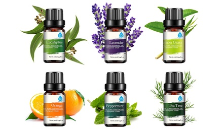Pursonic 100% Pure Essential Aromatherapy Oils Gift Set (6- or 14-Pack)