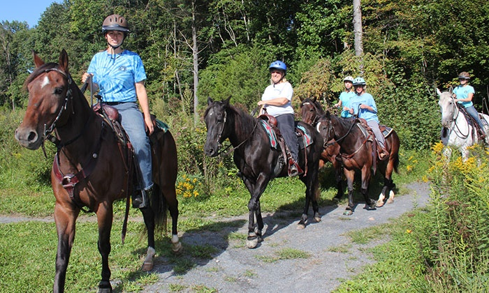 Bethlehem Carriage Company - Multiple Locations: Trail Ride for Two, Carriage Ride for Four, or Pony Parties from Bethlehem Carriage Company (Up to 74% Off)